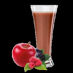 Ovocňák - Sok 100% jabłko+owoce leśne 250 ml