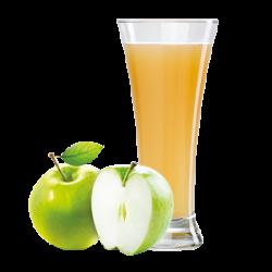 Ovocňák - Sok 100% jabłko 200 ml