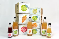 100% sok Jabłko marchewka 0,33lt - Najpopularniejsze warzywa czeskiej kuchni wspomagają regenerację. To bardzo popularne wśród dzieci. Podorlická sodovkárna Rychnov n/ Kněžnou