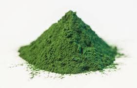 Sedmikráska bylinný extrakt Chlorella 250 ml *imunita*vitalita*srdce a cévy*střeva*játra*pročištění* doplněk stravy Rodinná farma Sedmikráska