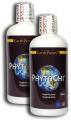 PhytoChi™ 8x500ml - suplement diety według tradycyjnej medycyny chińskiej Earth Power