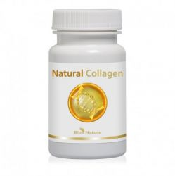 Kolagen naturalny: kolagen rybi + dzika róża + siarka organiczna (MSM)