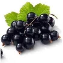 Dżem owocowy Daisy - Czarna porzeczka 520 ml